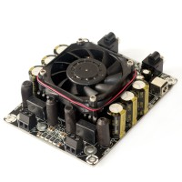 2 x 100 Watt Class D Audio Amplifier Board - T-AMP (for Gaming Kiosks)